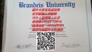 美国布兰迪斯大学文凭原版制作QV993533701(Brandeis University)|国外大学学位证书,美国大学留信认证