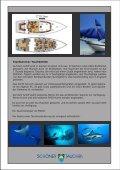 Reiseanmeldung Natur- & Erlebnisreisen GmbH & Co ... - Pesti Video - Page 5