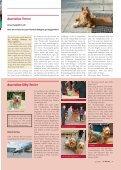 Terrier - Klub für Terrier e.V. - Seite 6