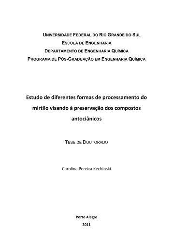 Estudo de diferentes formas de processamento do mirtilo visando à ...