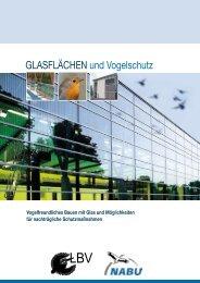 Glasflächen und Vogelschutz - Window collisions