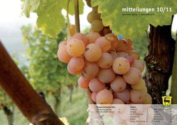 mitteilungen 10/11 - Gemeinde Eglisau