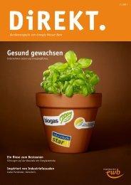 2011 als (PDF) - Energie Wasser Bern