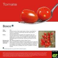 Bosco_Leaflet-2020
