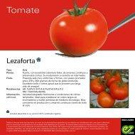 Lezaforta_Leaflet-2020