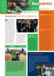 Baupalette I/2010 - Royal BAM Group