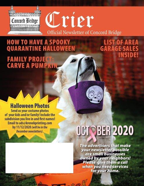 Concord Halloween 2020 Concord Bridge October 2020