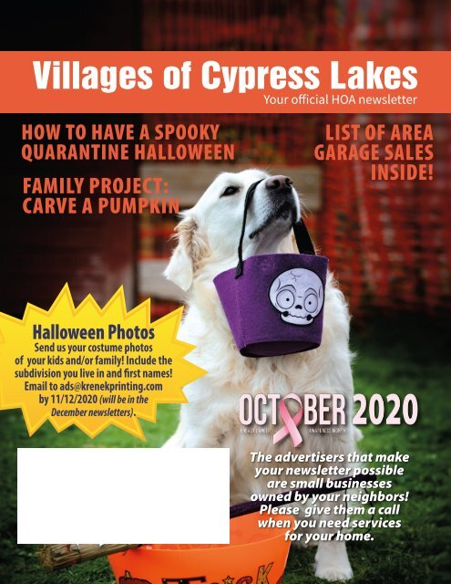 Villages of Cypress Lakes October 2020
