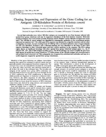 Cloning, Sequencing, and Expression of the Gene Coding for an