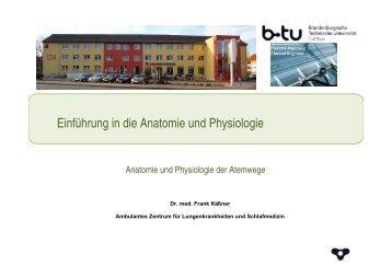 Anatomie und Physiologie der Atemwege - Ambulantes Zentrum für ...
