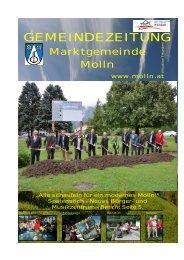 (1,72 MB) - .PDF - Molln