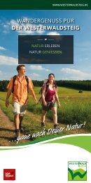 Westerwald-Steig-Broschüre