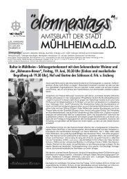 LEADER: Projektideen liegen vor - Mühlheim an der Donau