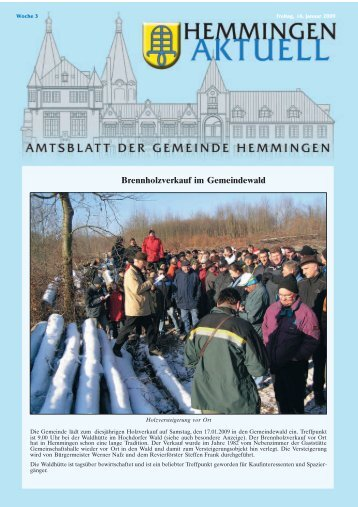 Schulen - Gemeinde Hemmingen