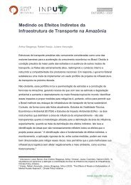 Medindo Efeitos Indiretos da Infraestrutura de Transporte na Amazônia