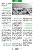 Sturmumtoste Herbstlaube - Mieterberatung Prenzlauer Berg GmbH ... - Seite 5