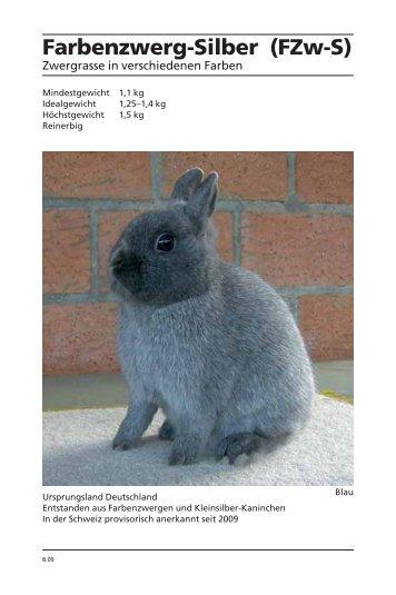 Farbenzwerg-Silber (FZw-S) - Kleintiere Schweiz