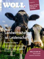 WOLL Magazin Brilon, Marsberg, Willingen, Diemelsee // Herbst 2020
