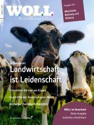 WOLL Magazin Meschede, Bestwig, Olsberg // Herbst 2020