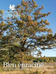 Magazine automne 2020