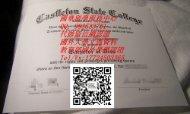 美国卡斯尔顿州立学院毕业证样本QV993533701(Castleton State College)|美国大学文凭成绩单制作,美国大学学位证书