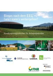 Leitfaden Biogas nach dem EEG – (wie) kann's weitergen?