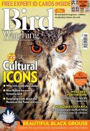 Bird Watching mini-mag October 20