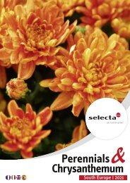 Selecta Perennials and Chrysanthemum South Europe 2021