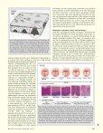 Kjemoprevensjon av munnhulekreft - Den norske tannlegeforenings ... - Page 2