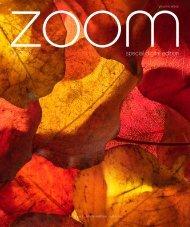 ZOOM | Fall 2020