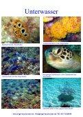 Seychellen 2008 - Segel und Tauchreisen - Seite 6