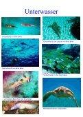Seychellen 2008 - Segel und Tauchreisen - Seite 7