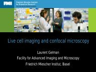 Live cell imaging and confocal microscopy - EPFL