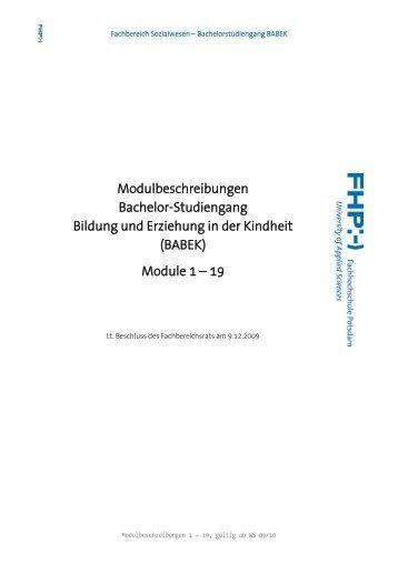 Modulbeschreibungen - Fachbereich Sozialwesen ...