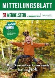 Wendelstein + Schwanstetten - November 2020