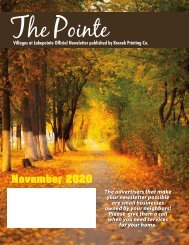 Villages at Lakepointe November 2020