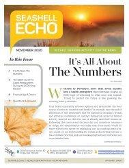 Seashell Echo | November 2020