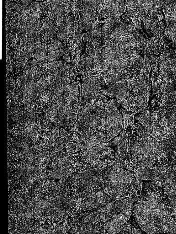 Der Tosefta-Traktat Jom Tob [microform]