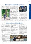 LMBV konkret 05/2010 - Seite 3