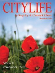 Citylife in Rugeley and Cannock Chase Newsletter November 2020