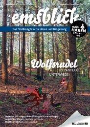 Emsblick Haren Heft 59 (November/Dezember 2020)