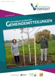 Gemeindemitteilungen 11/2020