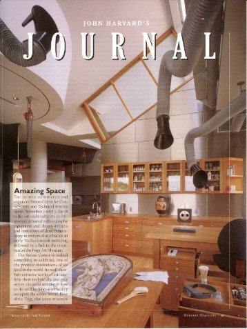 Article - Samuel Anderson Architects