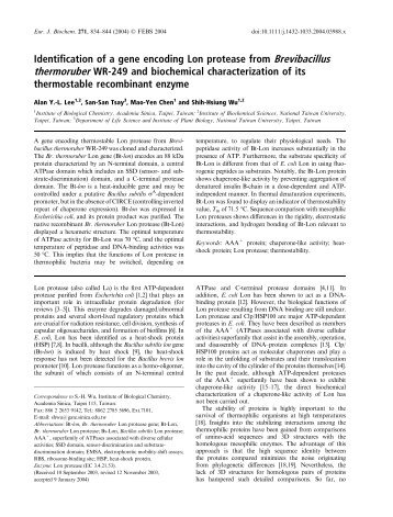 Identification of a gene encoding Lon protease from Brevibacillus ...