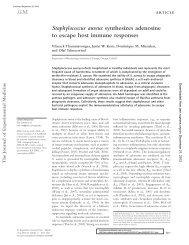 Staphylococcus aureus synthesizes adenosine to escape host ...