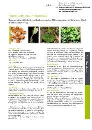 SHL Profile Brief RAS - HAFL - Berner Fachhochschule