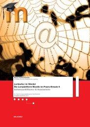 Schriftenreihe 8 - Berner Fachhochschule