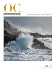 Oregon Coast Waves - 1.4 November 2020