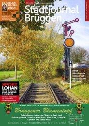 Stadtjournal Brüggen November 2020