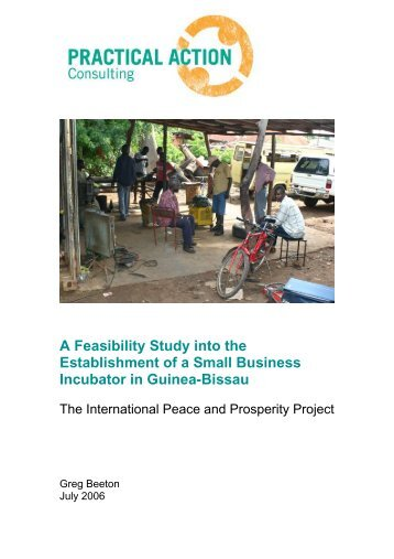 A Feasibility Study into the Establishment of a ... - Practical Action